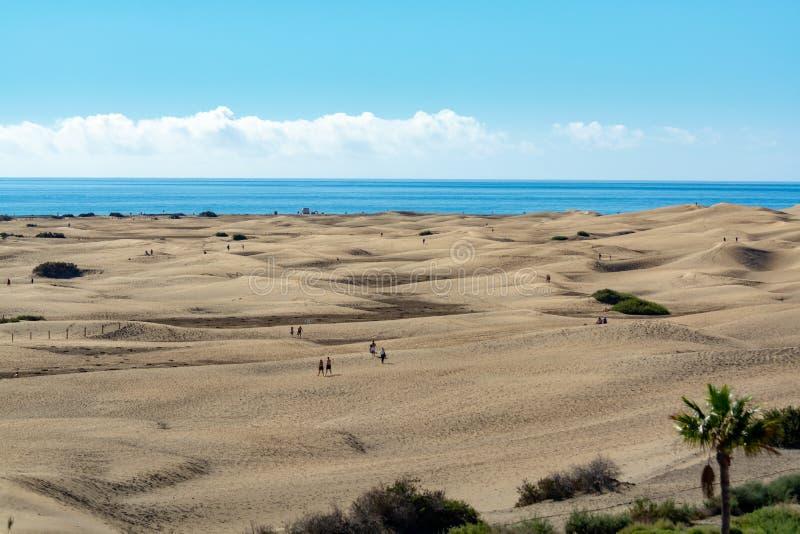 Landschaft mit gelben sandigen Dünen von Maspalomas und von blauem Atlantik, Gran Canaria, Spanien stockbild