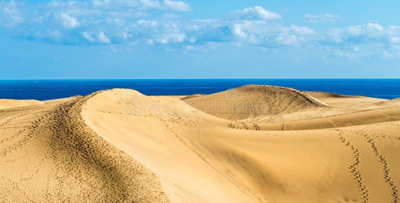 Landschaft mit goldenen Sanddünen stockbild