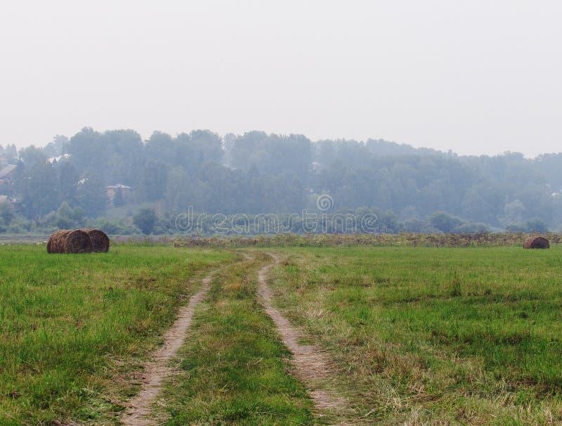Landschaft mit grüner Wiese, Wald im Abstand, Landstraße und verdrehten Heuschobern stockfoto