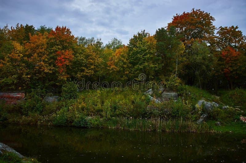 Landschaft mit Herbstbäumen und einem Teich lizenzfreie stockfotos
