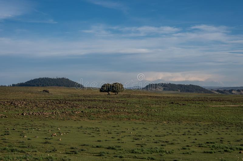 Landschaft mit Hochlandwiesen und -hügeln im mittleren Atlas stockfoto