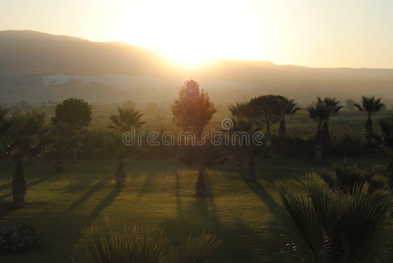 Landschaft mit nebeligen Hügeln und Bäumen bei Sonnenaufgang Goldener Sonnenaufgang des nebelhaften Morgens auf türkisch lizenzfreie stockbilder