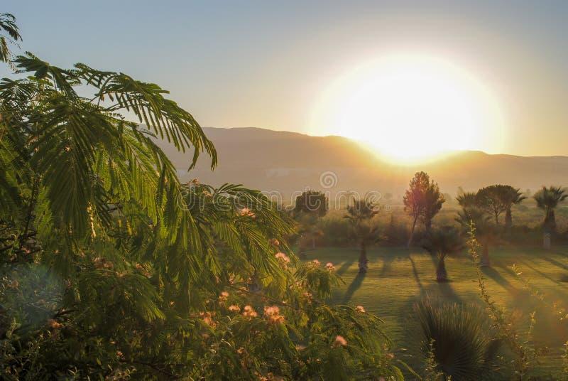 Landschaft mit nebeligen Hügeln und Bäumen bei Sonnenaufgang Goldener Sonnenaufgang des nebelhaften Morgens auf türkisch stockfotos