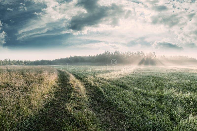 Landschaft mit Stra?e und Wiesen lizenzfreie stockbilder