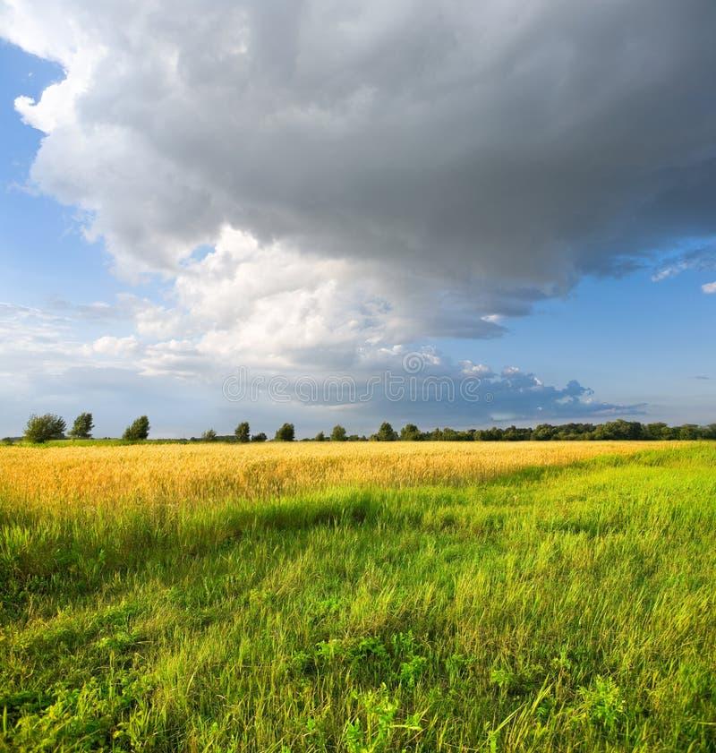 Landschaft mit Sturmwolken lizenzfreie stockbilder
