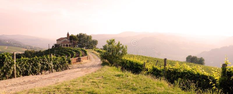 Landschaft mit Weinbergen und Kirche stockbilder