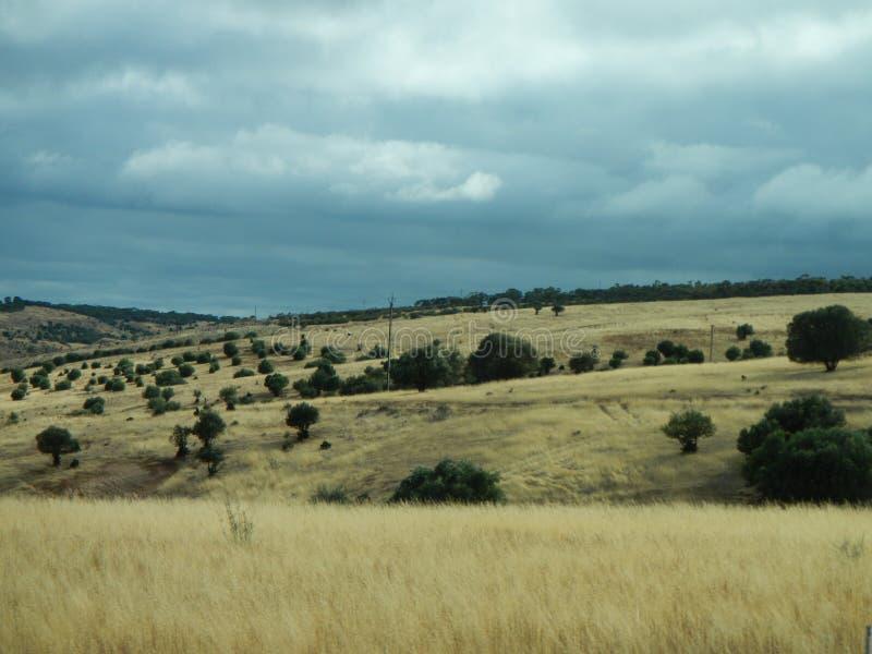 Landschaft nahe Adelaide, Australien lizenzfreie stockbilder