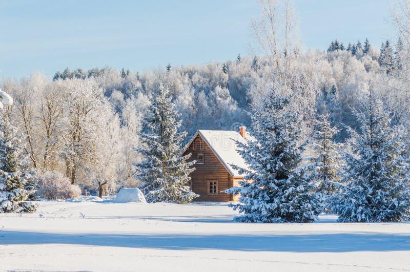 Landschaft nahe Haus des Malers Repin. lizenzfreies stockbild