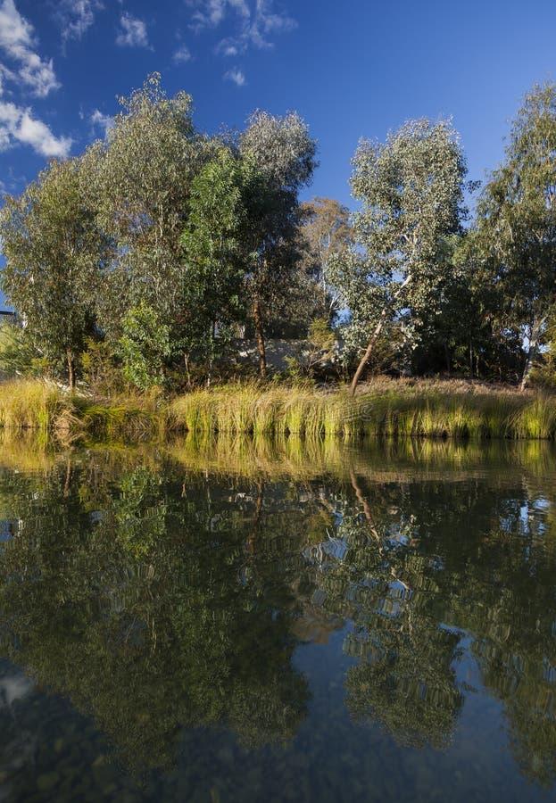 Landschaft nahe National Gallery Canberra Australien lizenzfreies stockfoto