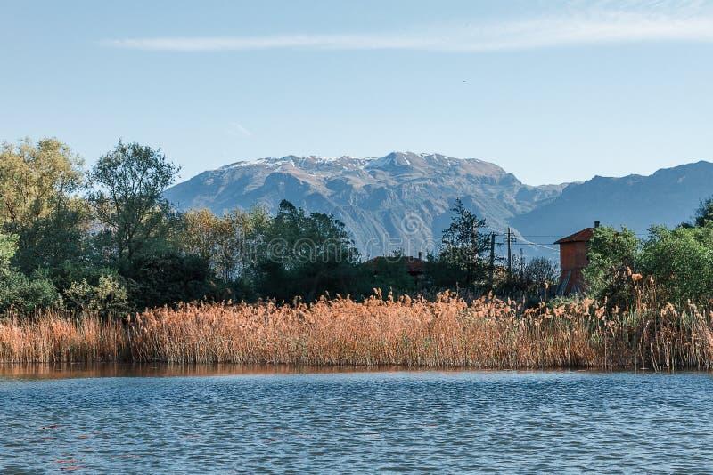 Landschaft natürlicher Reserve Torbiere Del Sebino in Lombardei lizenzfreie stockbilder