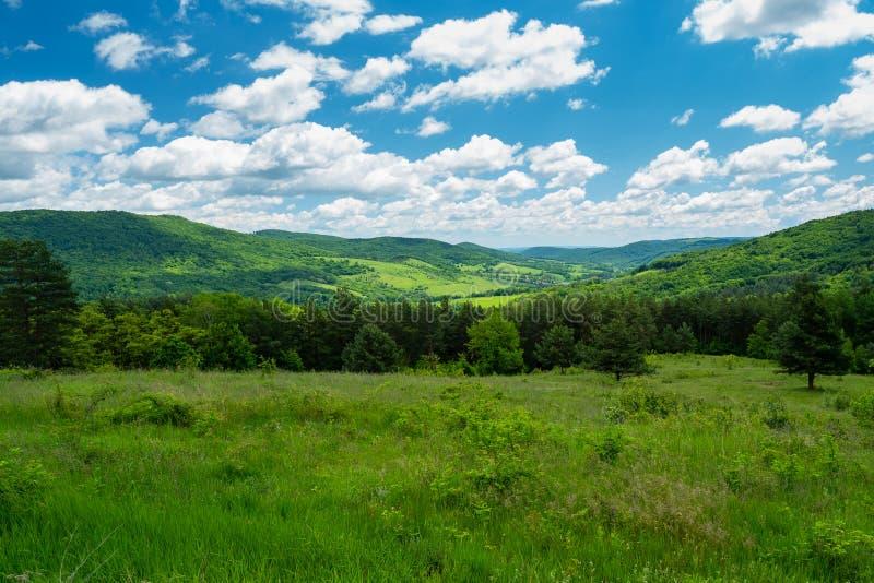 Landschaft, Natur, Ansicht, Wald, Slowakei, Slovenske-rudohorie, Europa, Frühling stockbild