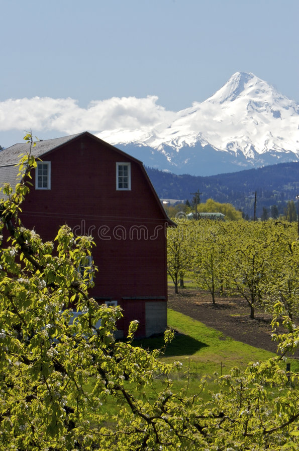 Landschaft in Oregon lizenzfreie stockfotos