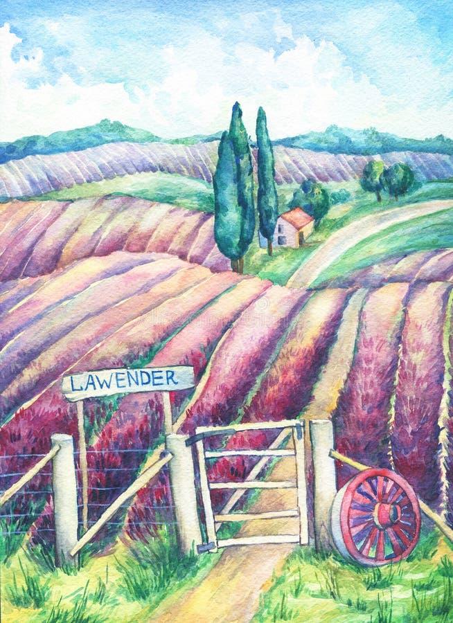 Landschaft in Provence Bunte blühende Lavendelfelder mit ländlichem Haus, Nummernschild, Wagenrad und Zaun vektor abbildung