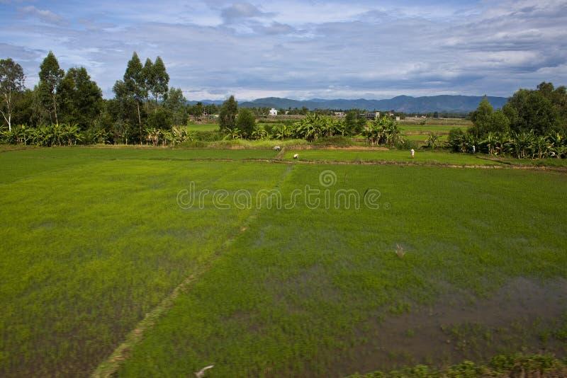 Landschaft in Süd-Vietnam stockfoto
