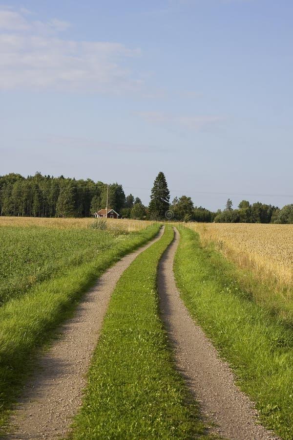 Landschaft Schweden lizenzfreies stockbild