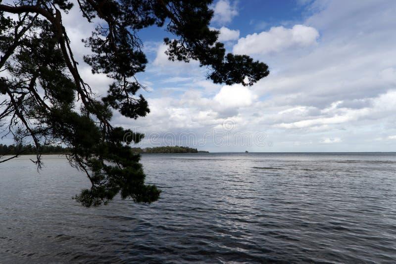 Landschaft am See Vaettern lizenzfreie stockfotos