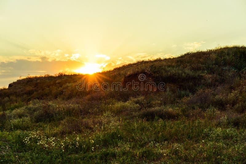 Landschaft, sonnige Dämmerung auf einem Gebiet Schöne grüne Hügel in der Dämmerung Karpaten, Ukraine, Europa stockfotos