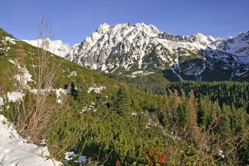 Landschaft in Tatra-Bergen, Winterzeit lizenzfreie stockfotos