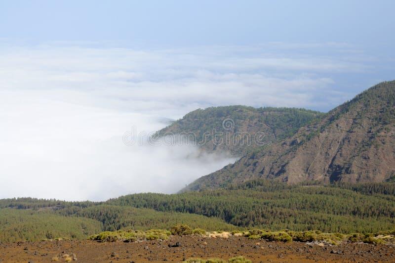 Landschaft in Tenerife stockfotos