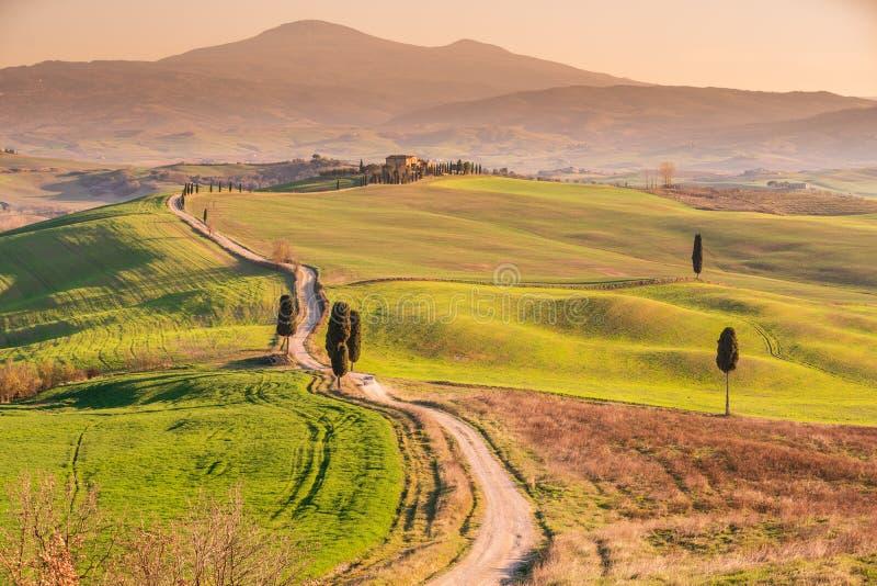 Landschaft, Toskana Val D'Orcia Val d 'Orcia bei Sonnenuntergang lizenzfreie stockfotos