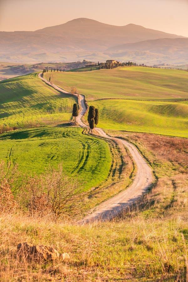 Landschaft, Toskana Val D'Orcia Val d ?Orcia bei Sonnenuntergang lizenzfreie stockfotos