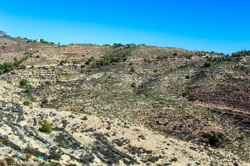 Landschaft trockenes zitronengelbes Mittelmeerteide stockfoto