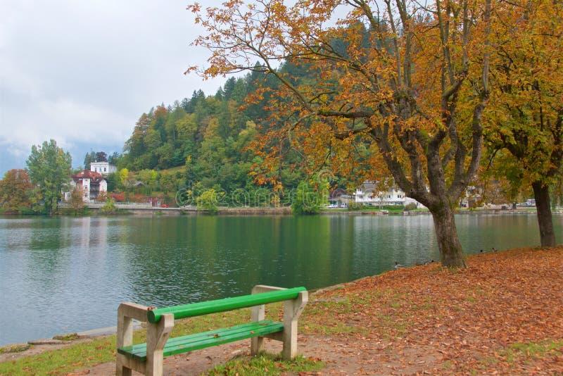 Landschaft um ausgebluteten See in Slowenien stockfotos