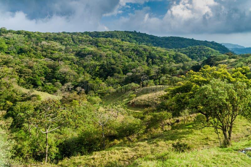 Landschaft um Santa Elena-Dorf, Costa Ri lizenzfreies stockfoto