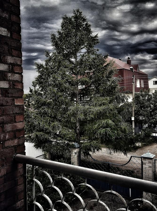 Landschaft vom Balkon zur alten Lärche im Sturmgebirgsmassiv stockfotos