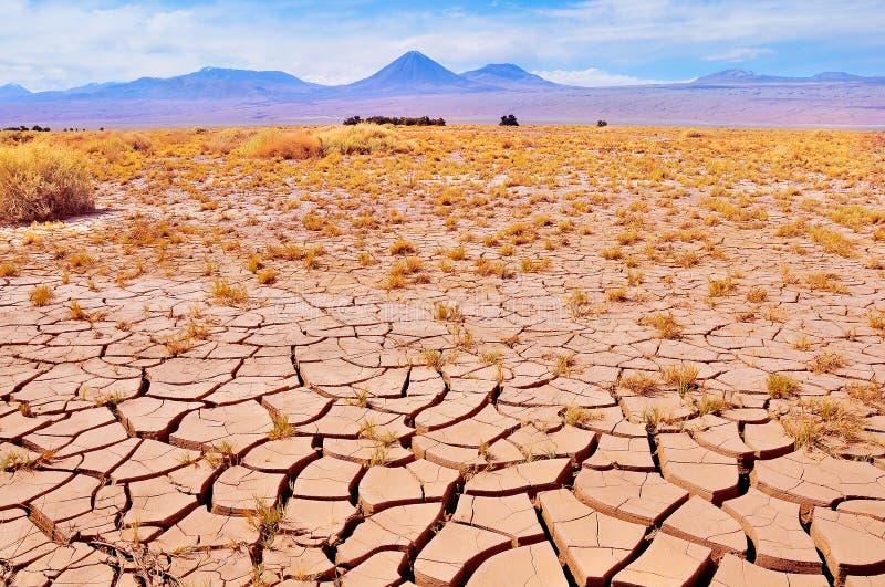 Landschaft von Atacama-Wüste lizenzfreie stockfotografie