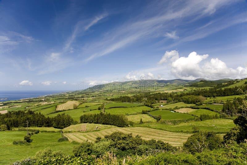 Landschaft von Azoren in Portugal lizenzfreie stockfotografie