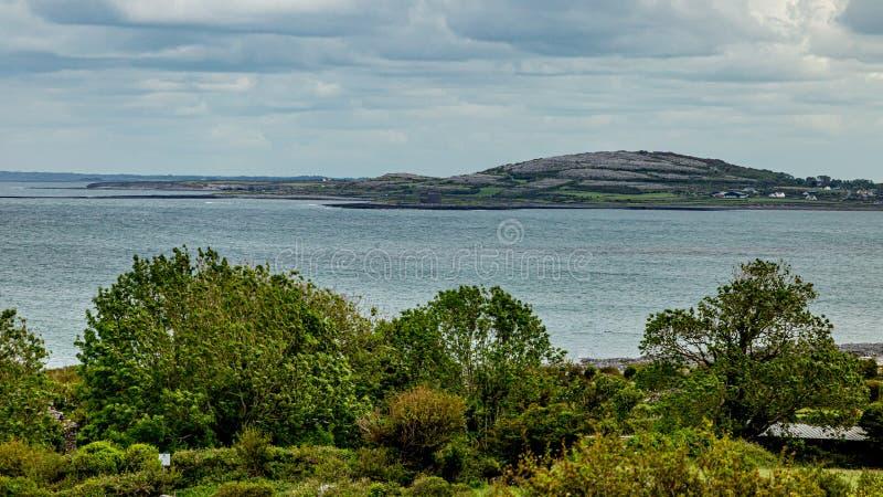 Landschaft von Bäumen entlang der Marineküste mit einem Kalksteinhügel im Hintergrund lizenzfreie stockfotos