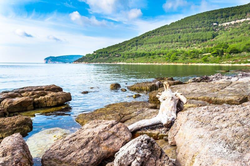 Landschaft von Capo Caccia von der Küste stockfoto