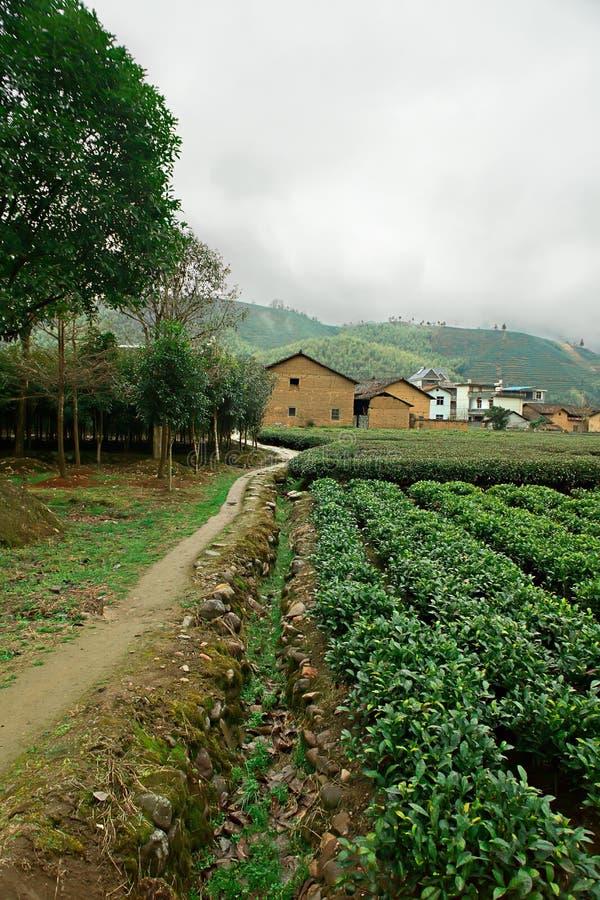 Landschaft von China stockfotografie