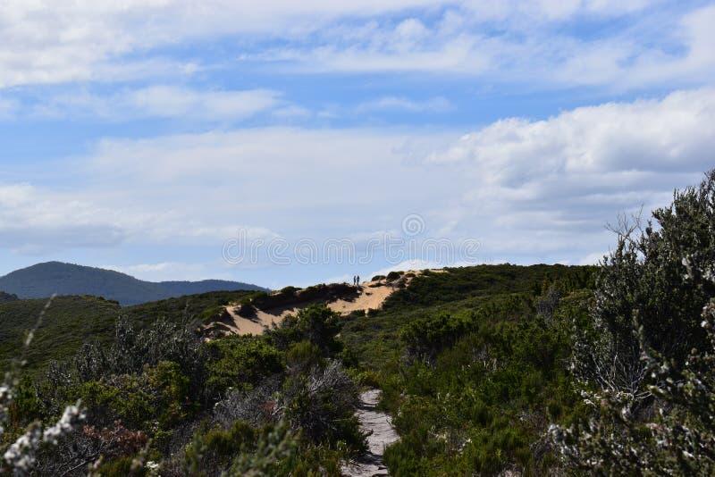 Landschaft von Dünen in Tasmanien, Australien stockbilder