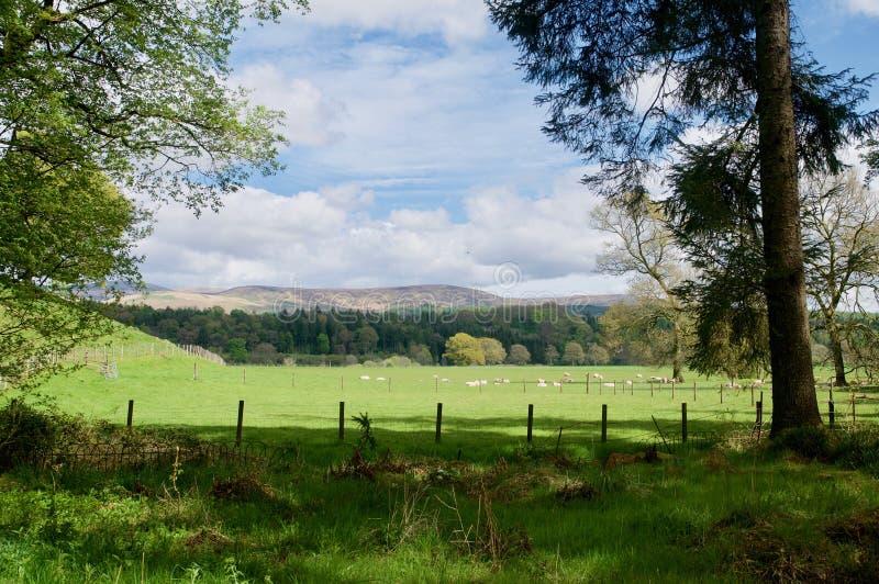 Landschaft von Dumfries stockfoto