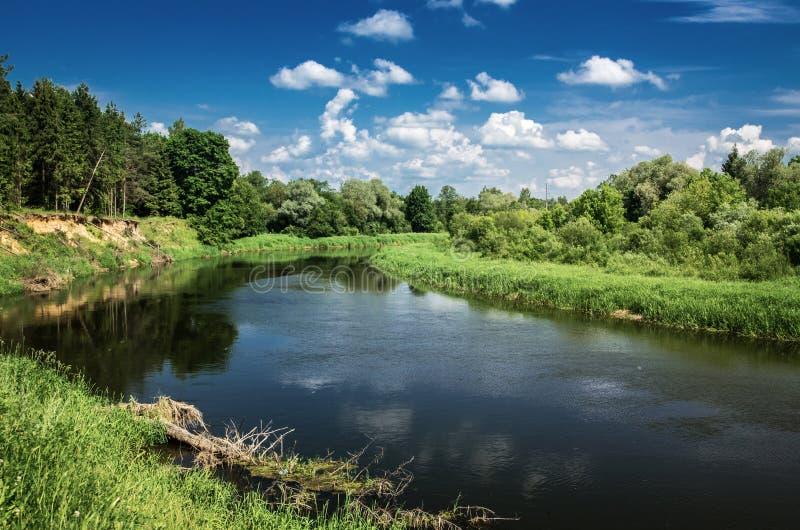 Landschaft von flüssigem Fluss lizenzfreie stockfotos