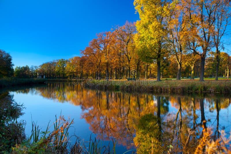 Landschaft von Fluss und von Bäumen am sonnigen Tag stockbild