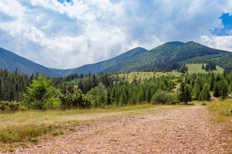 Landschaft von Karpaten-Berge mit Fu?weg, Tannenb?umen und Himmel lizenzfreies stockfoto