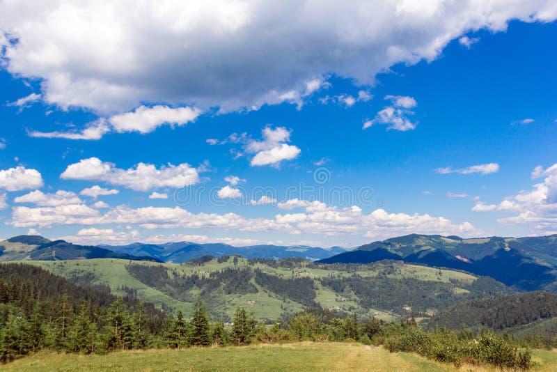 Landschaft von Karpaten-Berge mit Tannenb?umen, grasartigem Tal und Himmel stockfotografie
