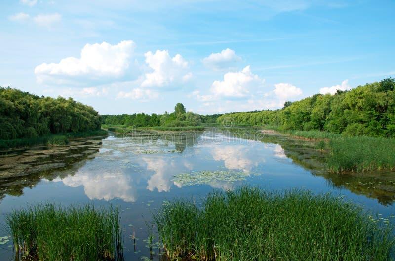 Landschaft von Kleinem-Balaton, Ungarn stockfotos