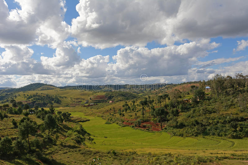Landschaft von Madagaskar lizenzfreie stockfotos