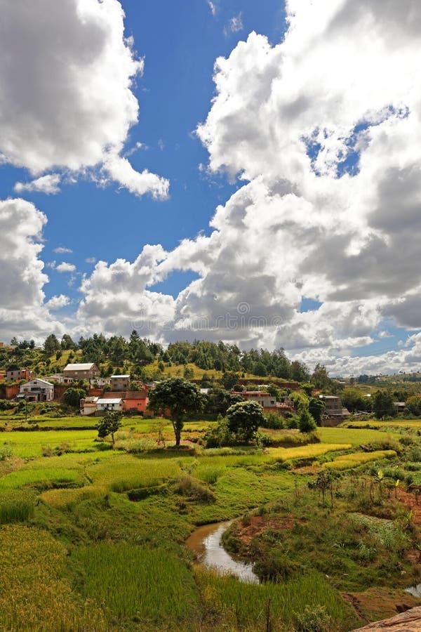 Landschaft von Madagaskar lizenzfreies stockfoto