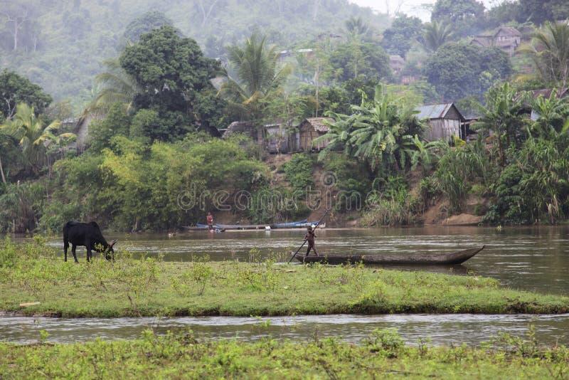 Landschaft von Madagaskar lizenzfreie stockbilder