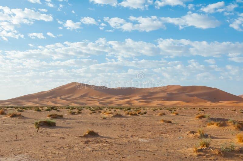 Landschaft von Marokko lizenzfreie stockbilder