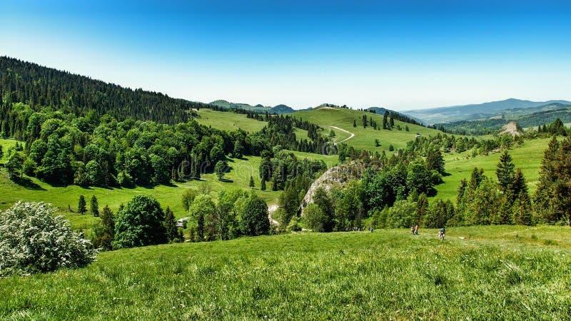 Landschaft von Pieniny-Strecke in S?d-Polen lizenzfreies stockfoto
