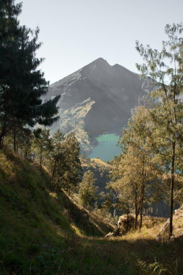Landschaft von Rinjani, Lombok, Indonesien lizenzfreies stockbild