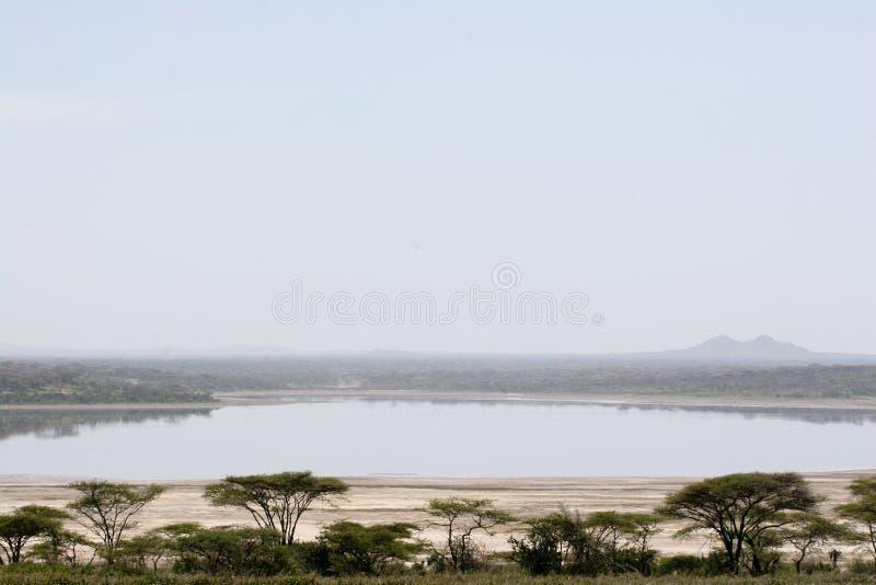 Landschaft von See Ndutu lizenzfreies stockfoto