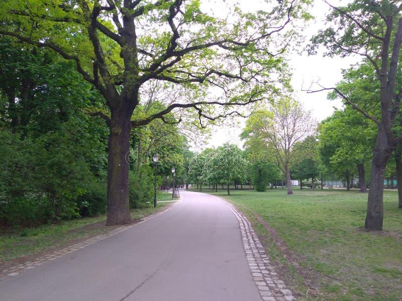 Landschaft von Spreebogenpark, Berlin lizenzfreie stockbilder