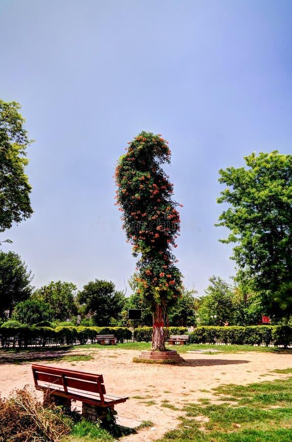 Landschaft von Tehsil-Park in Gor Khuttree-historischer Stätte, Peschawar, Pakistan stockbild